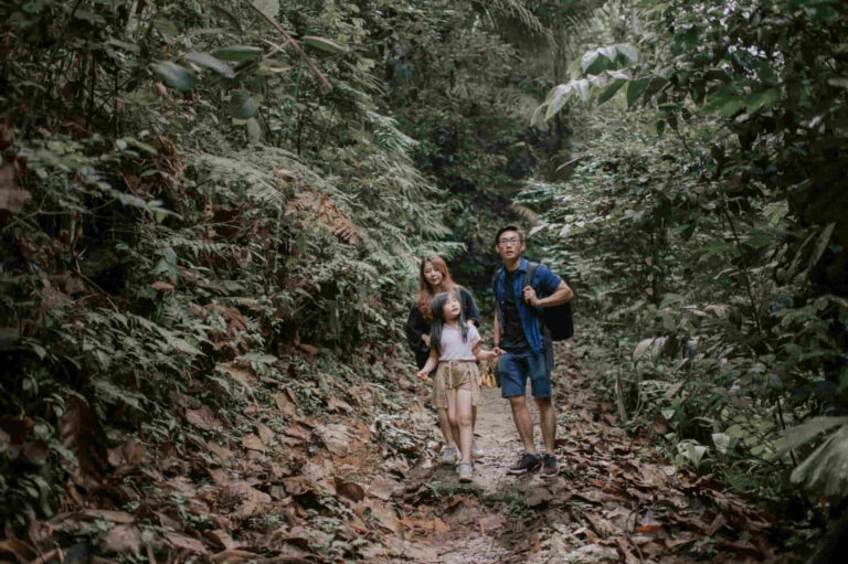 Survival Tips – An Exciting Experience When Cave Camping With Your Family